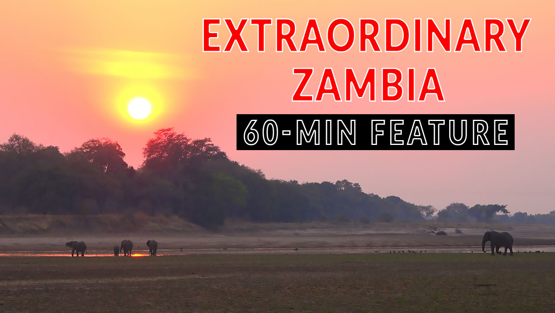 ZAMBIA WILDLIFE OVERLAND. Full-length feature documentary part-1  4xOverland